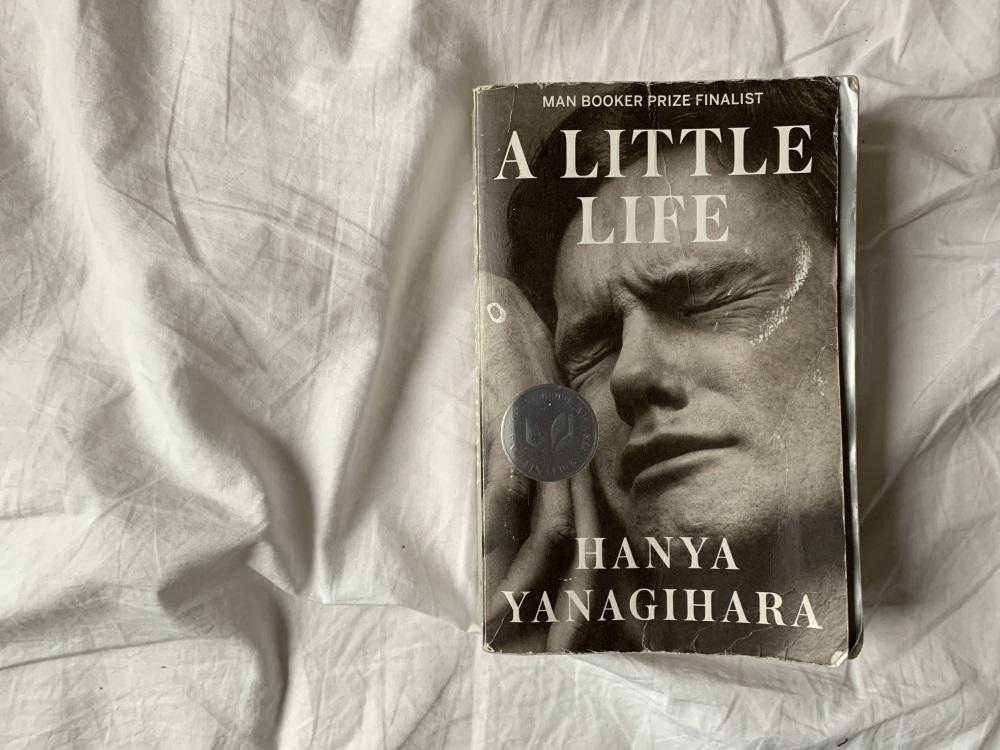 Ein wenig Leben / A little Life, Foto: S. M. Gruber