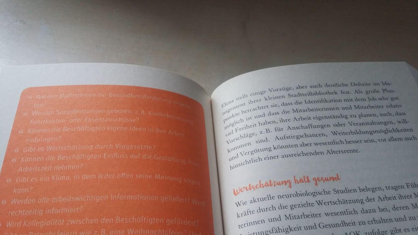 """Auszug aus """"Ich steh auf mich"""": Der Kontrast der orangefarbenen Kästen und der weißen Schrift ist schlecht lesbar. Foto: Kia Kahawa"""