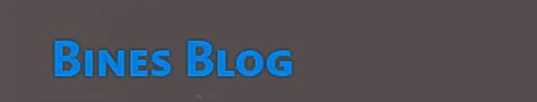 Bines Blog
