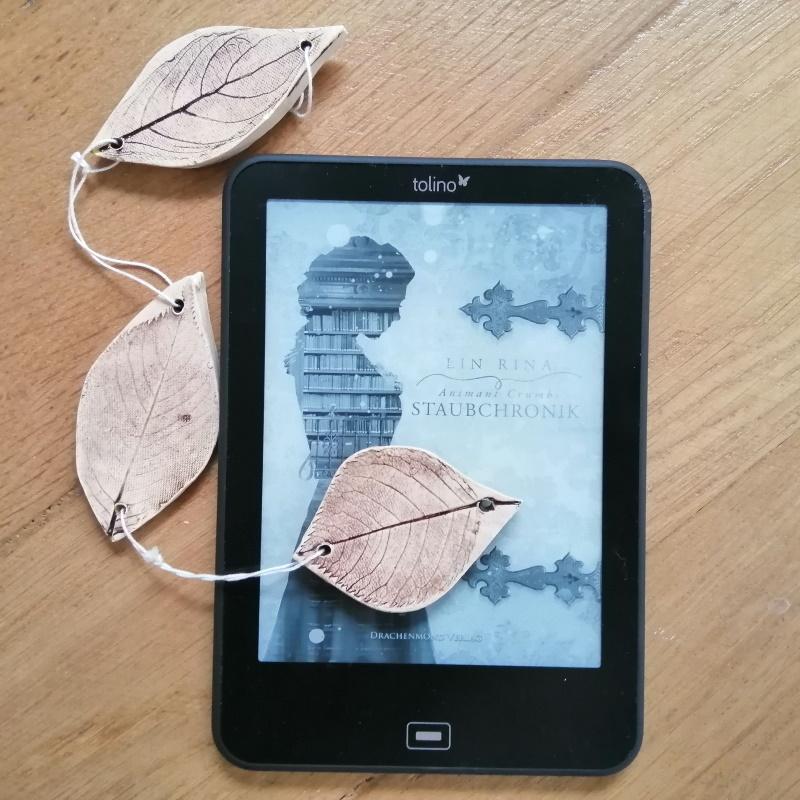 Cover des E-Books von Staubchronik. Foto: Magret Kindermann