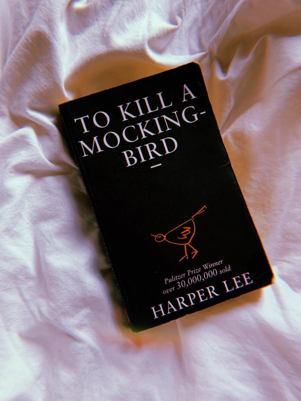 Wer die Nachtigall stört / To Kill a Mockingbird. Foto: S. M. Gruber